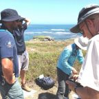 Lancelin Island Tern Reference Group setting up tracking equipment