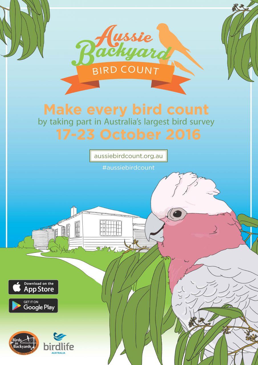 aussie backyard bird count nacc northern agricultural catchments
