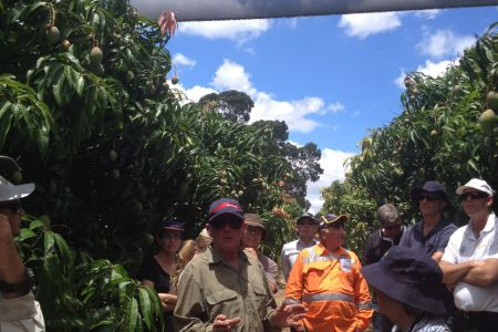 Southern Mango Growers Group Farm Demonstration Field Day January 2016