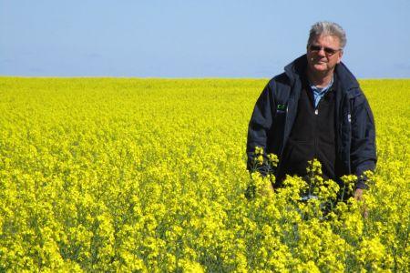 Stuart McAlpine NAR Soil Health Champion 2015  in fields of healthy canola.