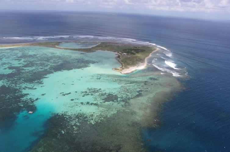Abrolhos Islands Rehabilitation*