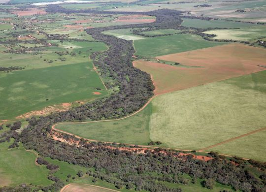 Arial Photo of the Revegetation in the Shire of Chapman Valley. Photo by Graeme Gibbons.