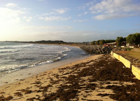 Help clean up our beautiful Geraldton beaches.