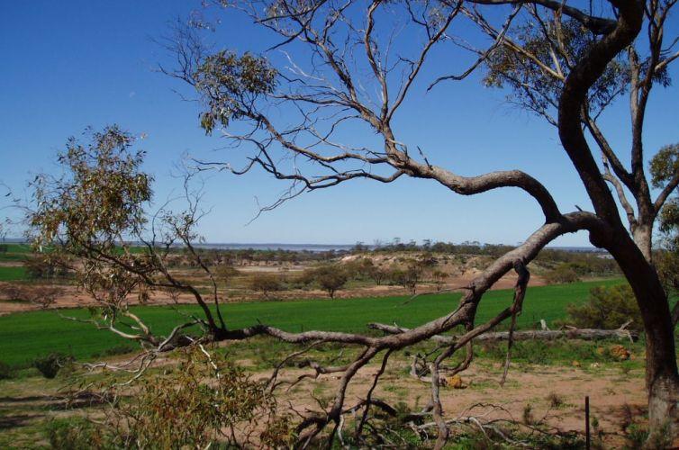 Biodiversity Community Grants Program