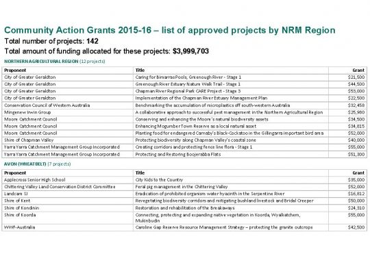 Community Action Grants successful recipients