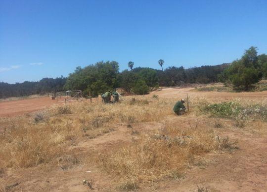 Aboriginal prisoners project Greenough river 2