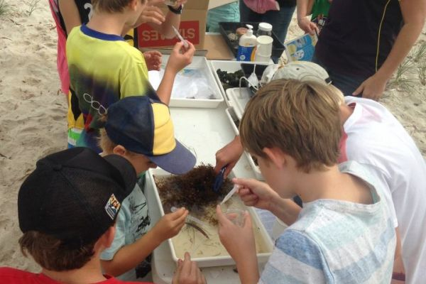Local Cervantes kids learn the wonders of beach wrack.