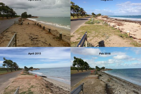 In its fifth year of operation, the beach photo-monitoring program has built up some impressive data-sets of coastal erosion, this one of Whitehill Road in Drummonds Cove, Geraldton.