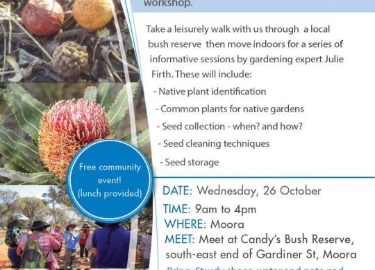Moora Seed Workshop
