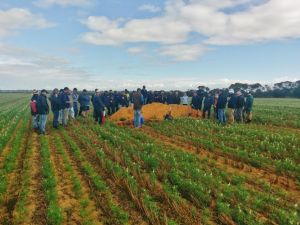 There was a great turn-out for the Dryland farming bus tour last week.