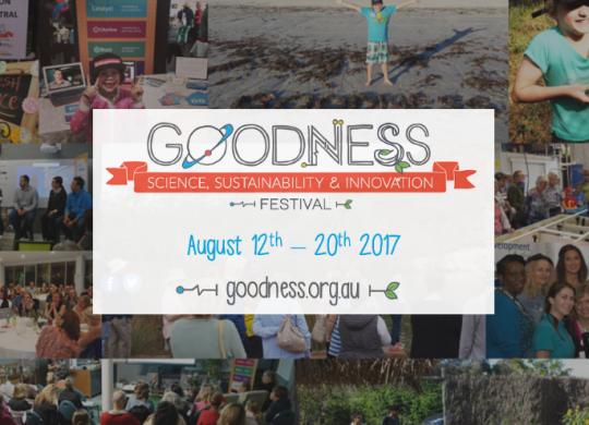 goodness festival;