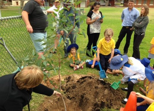 The weather did not deter seven schools in the NACC NRM who took part in National Tree Day.
