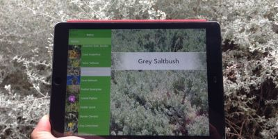 A smartphone app version of our popular Coastal Plant Pocket Guide is a great resource for Coastcare groups.