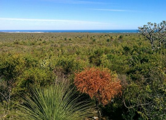 Nilgen Nature Reserve is located about 22km north of Lancelin.