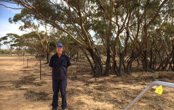 In a multi-staged project Burakin farmer Mal Sutherland has protected more than 110 hectares of remnant vegetation on his property, 'Rocky View'.