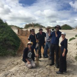 BCN members finishing off a sand trap fence intended to rebuild the fore dune.