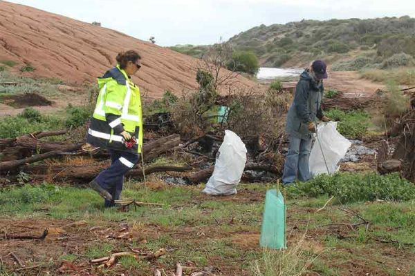 Iluka Rubbish Collection at Buller