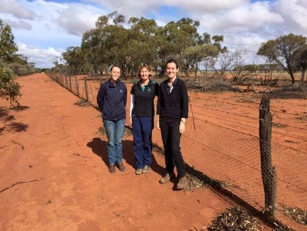 NACC Field Officers inspecting fencing near Perenjori