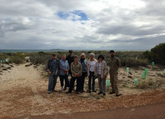 Member of the Jurien Bay Regional Herbarium Group, Parks and Wildlife and NACC staff revegetating coastal dunes.