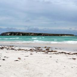 Wedge Island. Photo credit: ExplorOz
