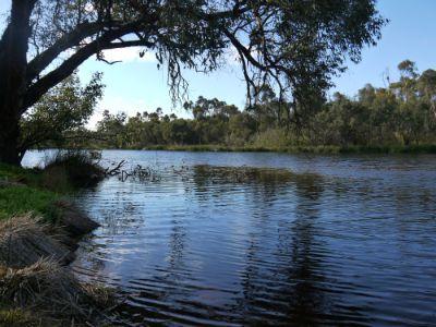 Spoonbill_Lake