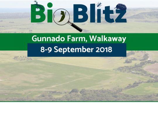 BioBlitz Header