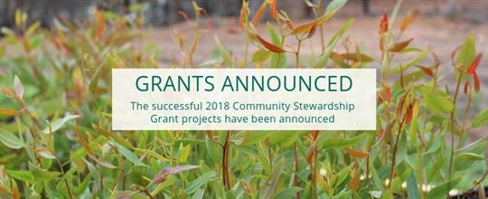 grants_announced__2__578x220