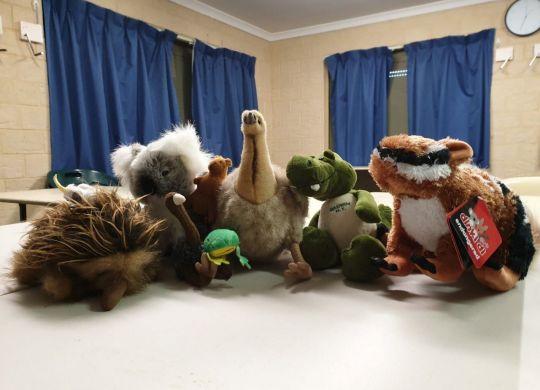 Animla Mascots