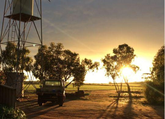Land_Sunrise_Christine_Broun